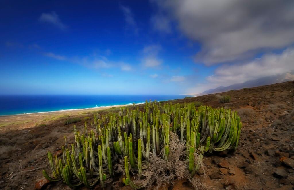 Vädret I Kanarieöarna I Mars 2020 Klimat Och Temperatur