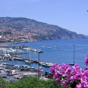 Madeira / 320